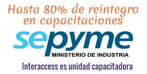 Sepyme Interaccess(1)